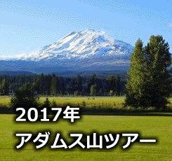 adams_2017